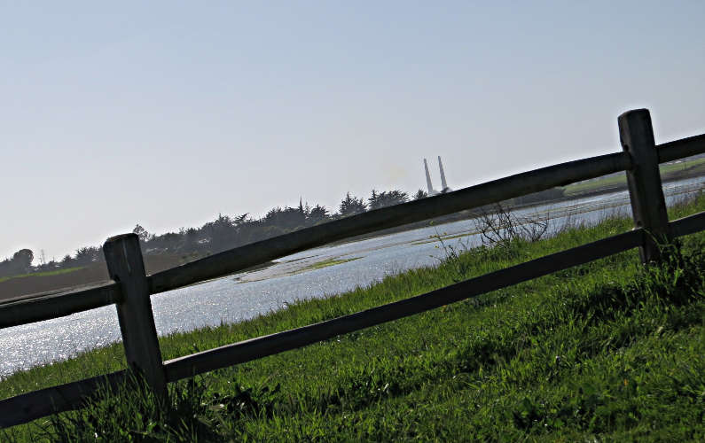 View of the Reserve Through the Fence with Smoke Stacks in the Distance at Elkhorn Slough