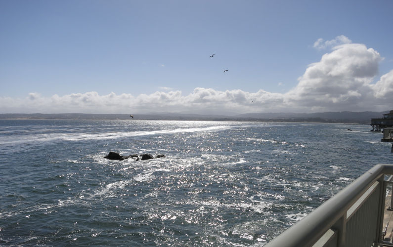 View of Monterey Bay From Monterey Bay Aquarium