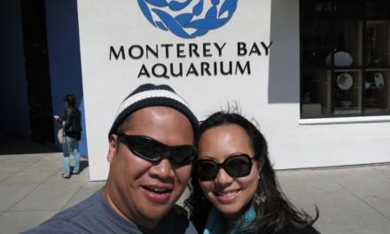 Amazing Pictures of Monterey Bay Aquarium