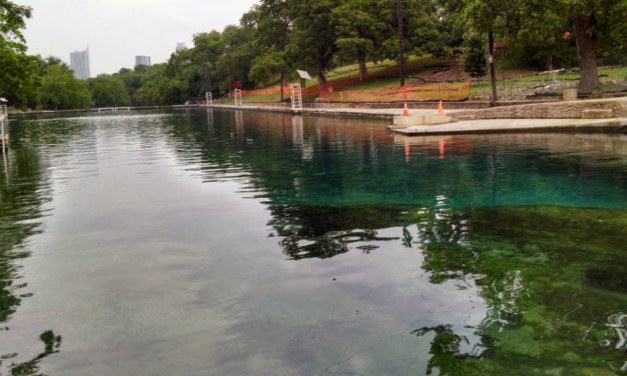 Taking a Dip in Barton Springs