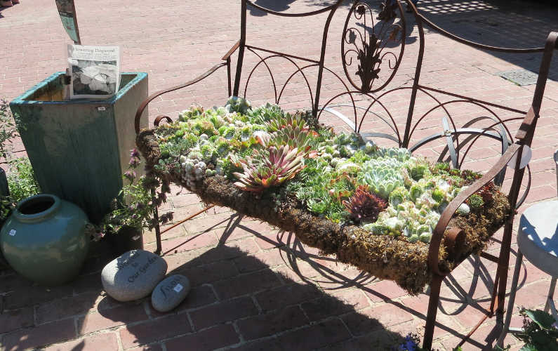 Bench with a Bed of Plants for the Seating Area at Filoli