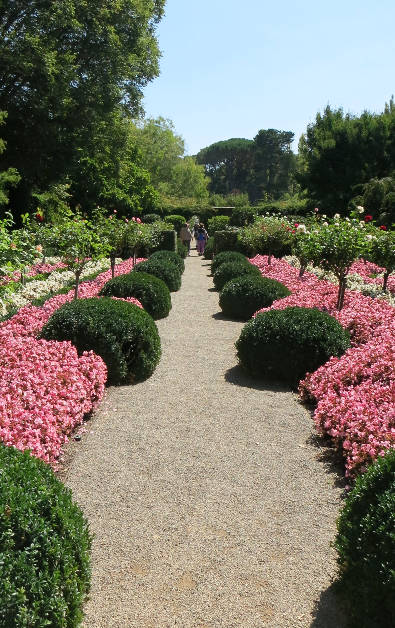 Flower and Bush Lined Pebble Path at Filoli