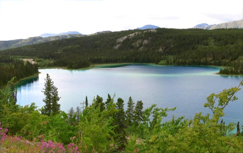 Emerald Lake During a Cruise Land Excursion in Alaska
