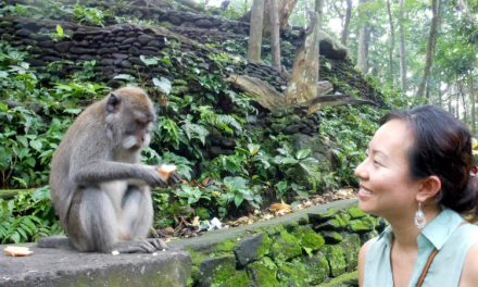 Visiting the Sacred Monkey Forest Sanctuary of Bali