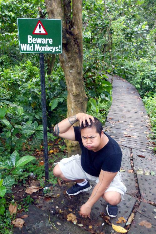 jm Monkey Forest Bali
