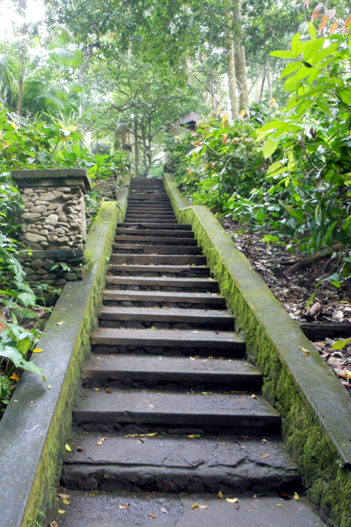 stairs Monkey Forest Bali