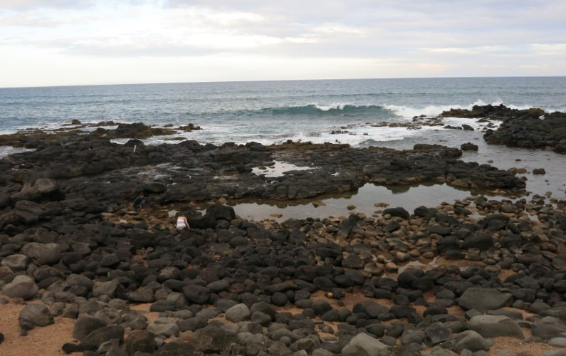Anahola beach Kauai HI (19)