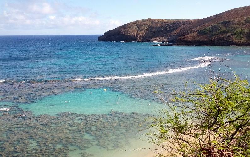 Hanauma Bay (11) Oahu