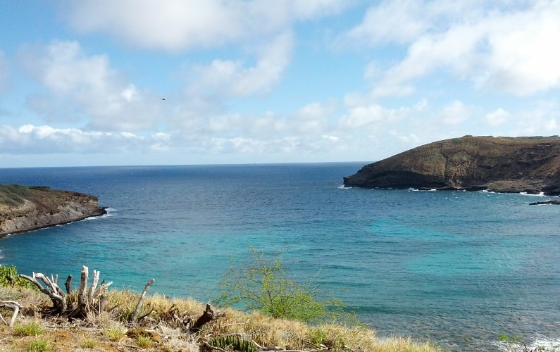 Hanauma Bay (14) Oahu