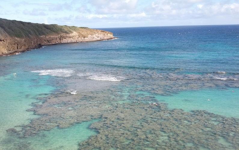 Hanauma Bay (4) Oahu