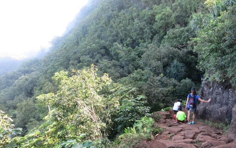 Napali Coast Kauai HI (2)