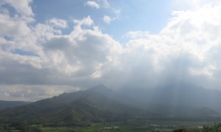 Look Out for the Hanalei Valley Lookout