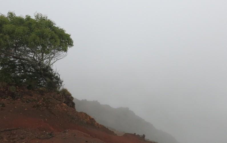 lookouts Waimea Kauai HI (60)