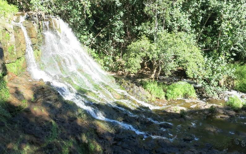 lower falls hoopi falls Kauai HI (95)
