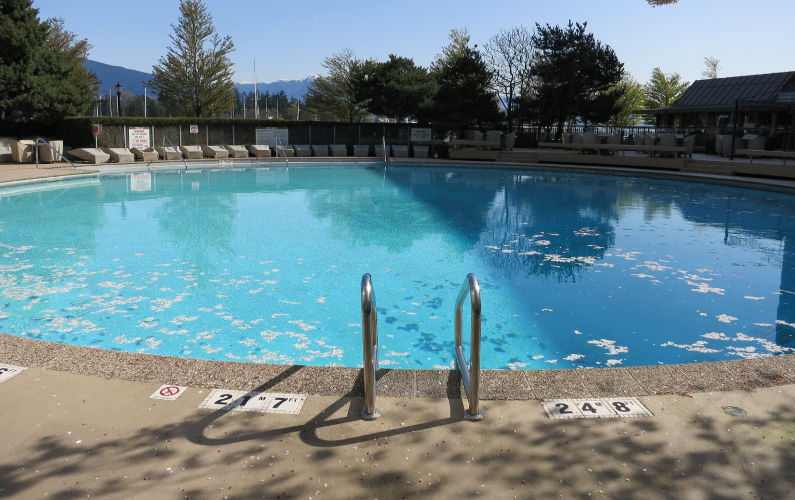 Vancouver Westin Bayshore Pool