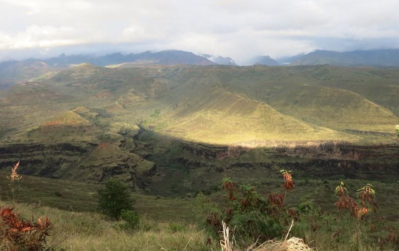 view Waimea Kauai HI (50)