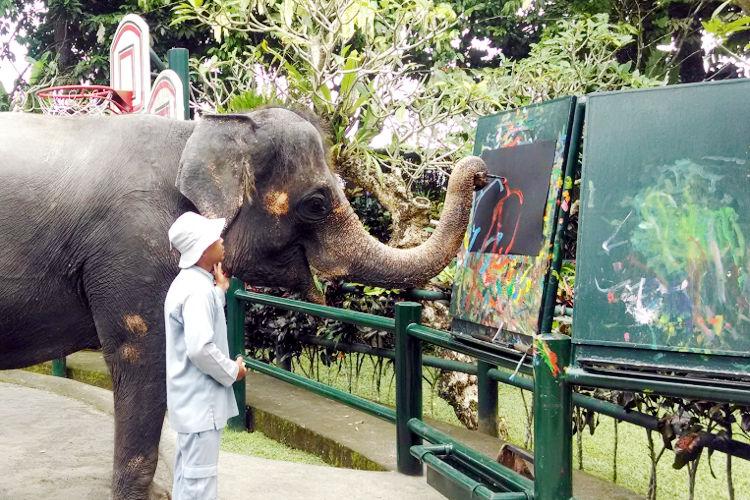 Painter Mason Elephant Lodge Bali