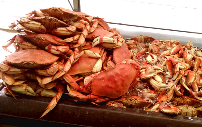 Mound of Cooked Crab at SF Fisherman's Wharf