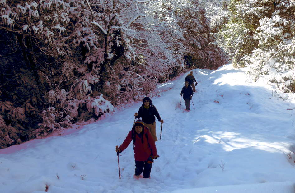 Hikers Slowly Hiking Through the Snow in Nepal