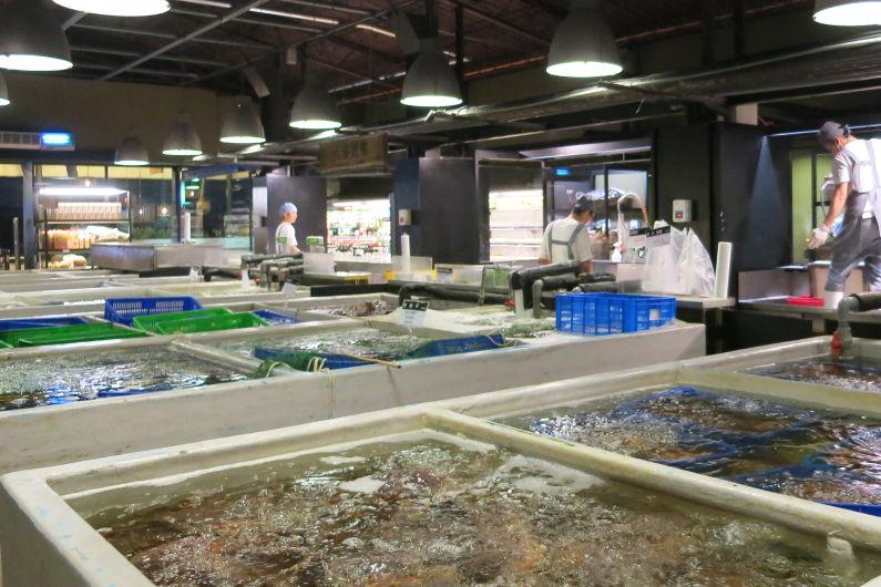 Live Seafood Holding Tanks at Addiction Aquatic Development
