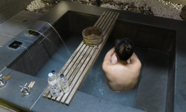 Relaxing Beitou Thermal Spa at Grand View Resort