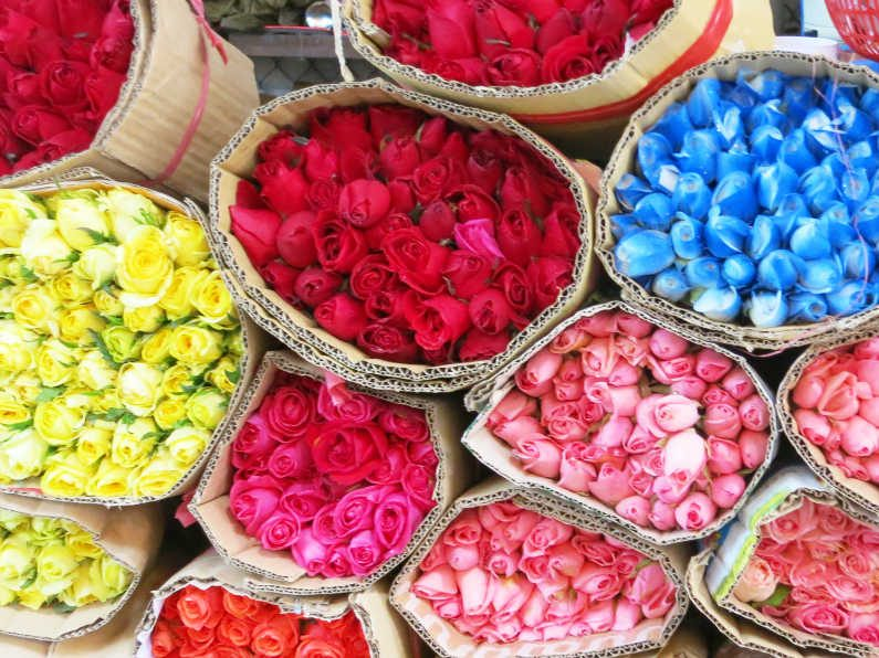 Red Yellow Blue Pink Roses at the Flower Market Saigon