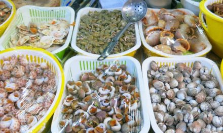 Feasting in Back Alley Seafood at Quan Oc Co Sang
