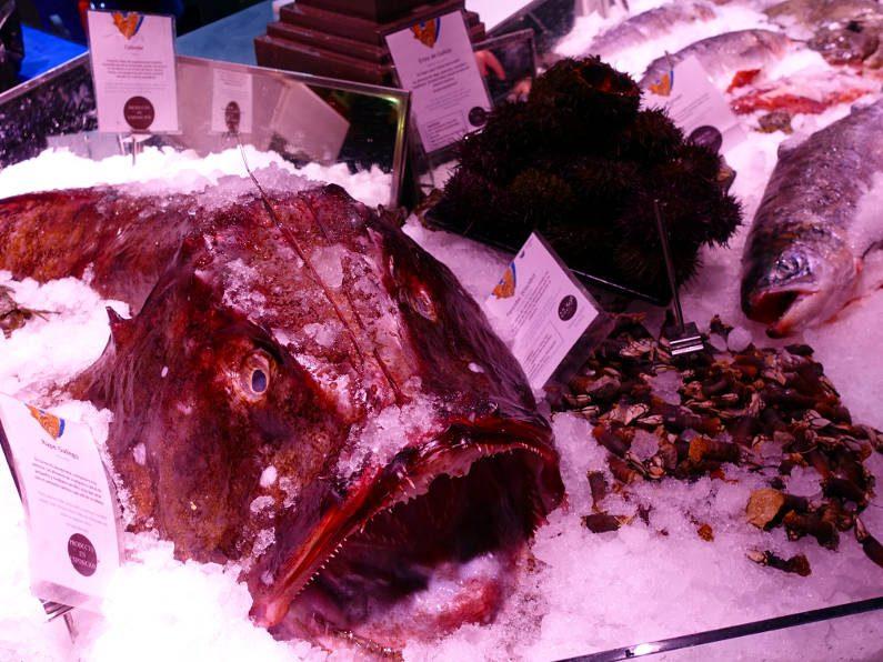 San Miguel Market Fish