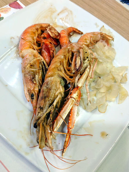 Terramundi Shrimp