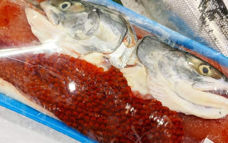 Costco salmon head and salmon roe Kawasaki Tokyo Japan