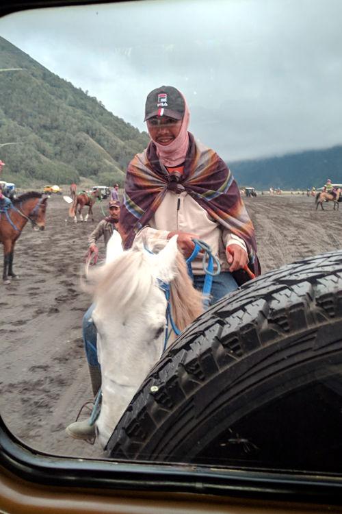 Horse Probolinggo Bromo