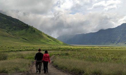 From Sand to Grass, Admiring Mount Bromo's Savanna