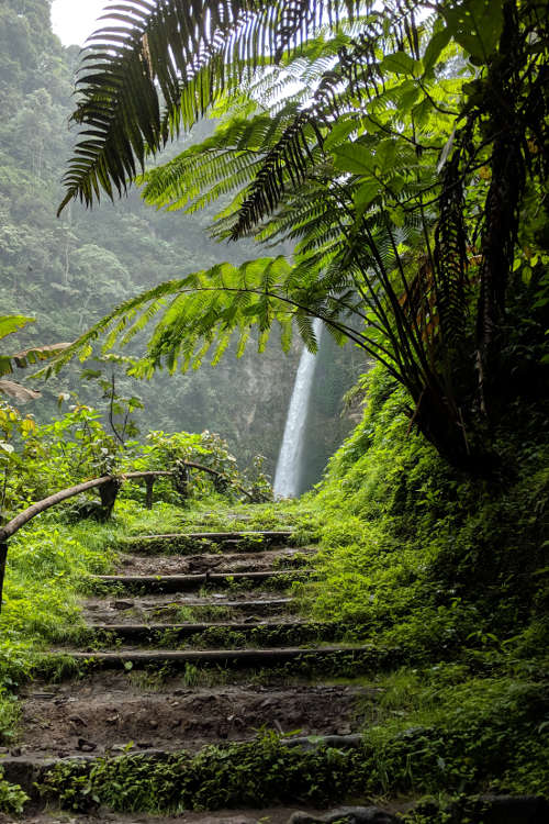 Path Air Terjun Coban Pelangi Waterfall 06
