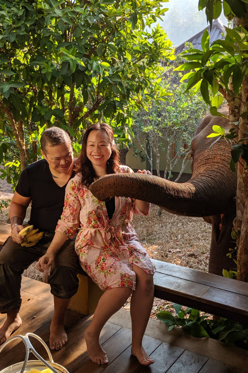 Chiang Mai Chai Lai Orchid Nadia and Jm and Elephant 02