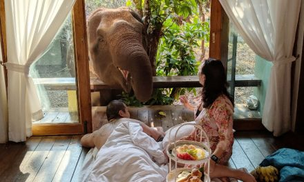 Staying at Chai Lai Orchid Elephant Sanctuary in Chiang Mai