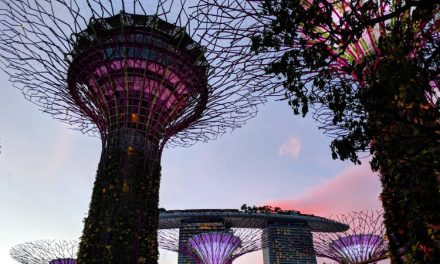 Singapore's Starting Phase 2 Soon