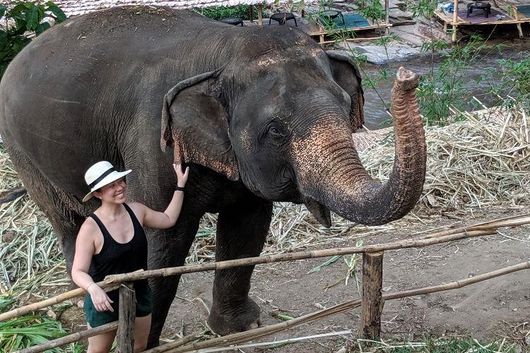 Nadia Elephants of Chai Lai Chiang Mai 2019